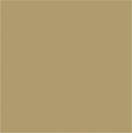 Colore Bronzo Verniciato